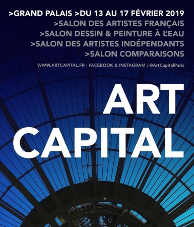 Grand-Palais Paris Comparaisons fevrier 2019
