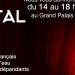 Paris Grand Palais Champs Elysées - février 2018