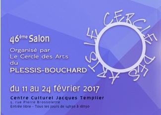 Le Plessis-Bouchart 95 - Février 2017