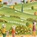 L'automne :la cueillette des champignons