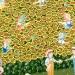 La pause sur le chemin du champ de tournesols