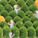 Les paysans dans l'orangerie