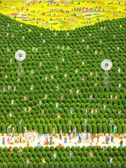 DE PAULA-CESSAC  Rosana - LA CUEILLETTE DES ORANGES-hauteur 116cm - largeur 89cn- vertical-300dpi en 13x18.jpg